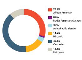 Student Demographics University Of Phoenix