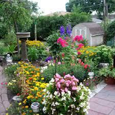 bachmans garden center. Bachman Garden Center 64 In Wow Small Home Decor Inspiration With Bachmans 0