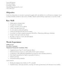 Job Skills For Resume Wonderful 1513 Job Skills Resume Markedwardsteen