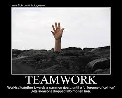 Teamwork Quotes Funny Extraordinary Agile Teamwork Quotes Managementdynamics