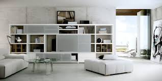 Living Room Storage Cabinets Living Room Storage Cabinet Living Room Design Ideas
