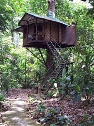 Stay In An Ecofriendly Tree HouseTreehouse In Thailand