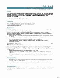 Email Marketing Resume Sample Luxury Email Marketing Manager Page