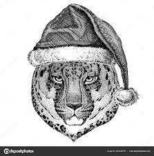пантера ягуар леопард носить рождество санта клауса шляпу руки