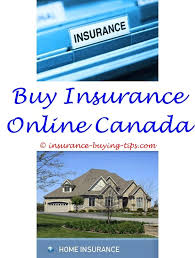 best car insurance quotes term life insurance term life and term life insurance