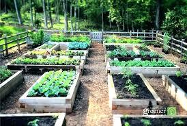 home depot garden soil garden soil miracle for raised beds organic cu bed bags 2 ft
