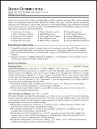 Hybrid Resume Template Delectable Hybrid Resume Template Word Executive Hybrid Resume Template