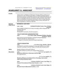 online resume profile examples best free resume writer template profile resume sample
