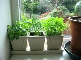 window herb planter interior kitchen herb planter cabinets remodeling net window sill box extraordinary indoor to window herb planter