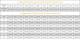 Bra And Cup Size Chart Korean Bra Size Chart Bra Sizes