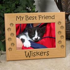 my best friend kitty picture frame
