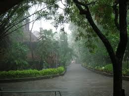 essay on rainy season in monsoon season essay for students rain has been described as the link between heaven and earth birds animals plants and human beings all welcome the rainy season because it gives them the