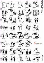 Exercise Chart For Men Bodybuilding Exercises Chart For Men 962660hfukhf Best Of