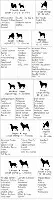 Pekingese Growth Chart 58 Brilliant Doberman Weight Chart Home Furniture