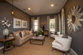 Tan Living Room Awesome Decorating