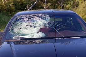 auto glass repair chicago on opening an auto glass replacement repair business open a business