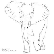 Small Picture African Elephant Bull Coloring Page