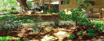 Small Picture Native Garden Landscape Ideas erikhanseninfo