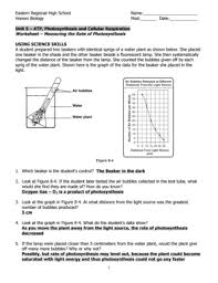Photosynthesis Worksheet Answer Key Fill Online Printable