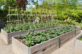 how to make a raised bed garden. Raised Bed Vegetable Garden Care How To Make A