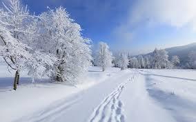 """Картинки по запросу """"фото тишина и снег"""""""