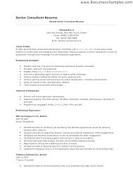 Leasing Consultant Resume Sample Magnificent Consultant Resume Sample Consulting Resume Templates Leasing