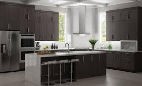 Frameless Kitchen Cabinet Manufacturers Gregorymattisongmailcom Author At Rsi Pcs Professional