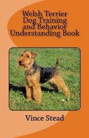 Welsh Terrier Dog Training and Behavior ...