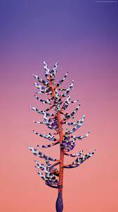 iOS 11, Flower, blue, abstract, apple ...