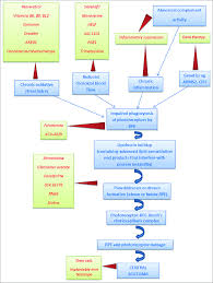 Flow Chart Of Pathophysiology Steps Targeted In Different