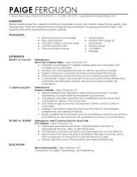 Inside Sales Resume Example Englishor Com