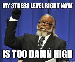 My stress level right now is too damn high - Too Damn High - quickmeme via Relatably.com