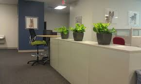 interior landscaping office. Plain Landscaping Interior Landscaping Inside Office