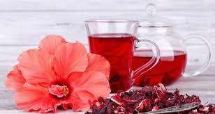 Resultado de imagem para Dieta do chá de hibisco