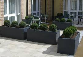 Image of: trough-garden-containers-plants