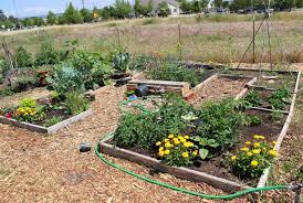 Garden Plot Design Ideas 10 Community Garden Design Ideas Most Of The Elegant And