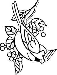 Small Picture Cardinal Coloring Page