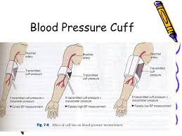 Blood Pressure Cuff Size Chart Proper Bp Cuff Size Related Keywords Suggestions Proper