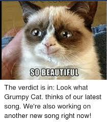grumpy cat so beautiful. Fine Beautiful Beautiful Cats And Work SO BEAUTIFUL The Verdict Is In Look What Inside Grumpy Cat So Beautiful W