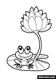Luau Flowers Coloring Pages Redleatherbookinginfo