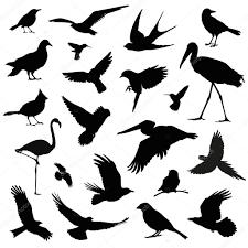鳥のシルエット イラスト セット ストックベクター Ivankeulen
