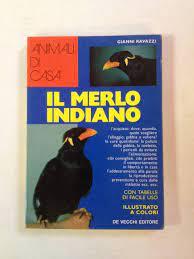 Il merlo indiano (Animali di casa): Amazon.de: Ravazzi, Gianni.:  Fremdsprachige Bücher
