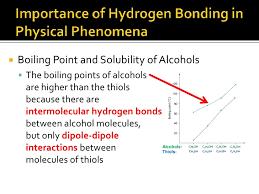 what atoms can form hydrogen bonds hydrogen bonding powerpoint