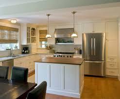 Modern Kitchen Remodel Kitchens Domus Custom Builders