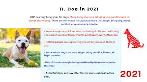 But it also represents a year of hard work, so that you can reap the rewards of your dedication. 2021 Ox Year Part 4 Of The Chinese Zodiac Analysis Rooster Dog And Pig Picture Healer Feng Shui Craft Art Chinese Medicine
