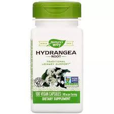 Nature's Way, <b>Hydrangea Root</b>, <b>740</b> mg, 100 Vegan Capsules