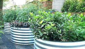 metal raised garden beds corrugated metal raised garden beds corrugated metal raised garden beds metal raised