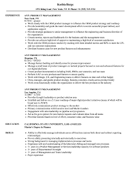 Product Management Resume Leadership Resume Sample Unusual Examples Skills Educational 87