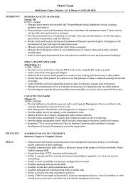 Capacity Manager Sample Resume Capacity Manager Resume Samples Velvet Jobs 1
