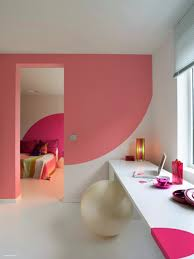 half circle pink cool wall painting designs